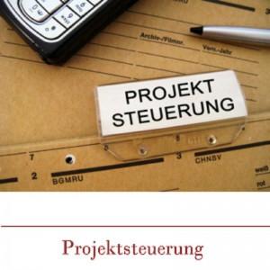 n-projektsteuerung